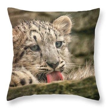 Cub And Tongue Throw Pillow