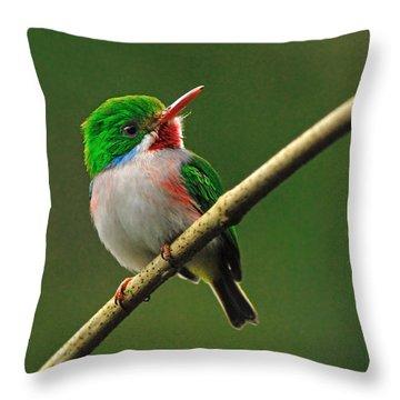 Cuban Tody Throw Pillow by Tony Beck