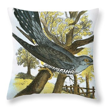 Cuckoo Throw Pillow by English School