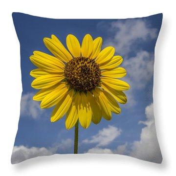 Cucumberleaf Sunflower Throw Pillow