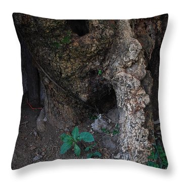 Cueva Throw Pillow