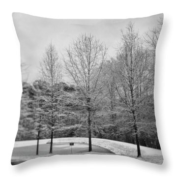 Cul De Sac View Throw Pillow