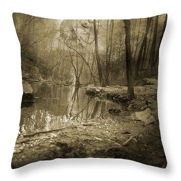 Culmination Throw Pillow by Betsy Knapp