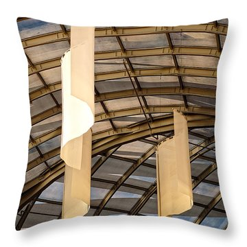 Cultural Sociology Throw Pillow by Charles Dobbs
