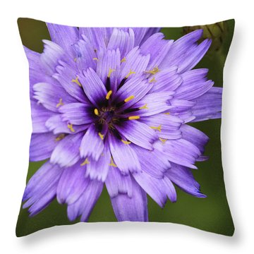 Cupid's Dart Throw Pillow