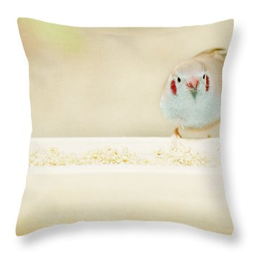 Curious Cordon Bleu Finch  Throw Pillow
