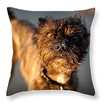 Curious George Throw Pillow