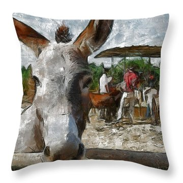 Curious  Throw Pillow by Georgi Dimitrov