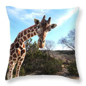 Curious Giraffe At Fossil Rim Wildlife Center Throw Pillow