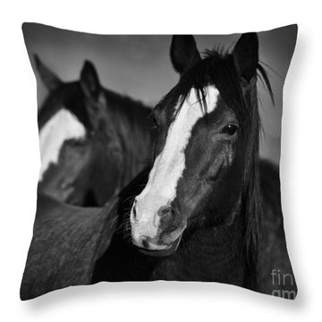 Curious Horses Throw Pillow