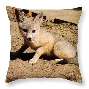 Curious Kit Fox Throw Pillow