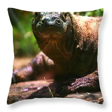 Curious Komodo Throw Pillow by Lon Casler Bixby