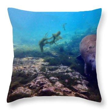 Curious Manatee 2 Throw Pillow