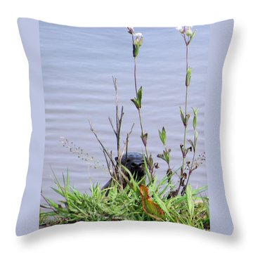 Throw Pillow featuring the photograph Curious Otter by I'ina Van Lawick