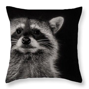 Curious Raccoon Throw Pillow