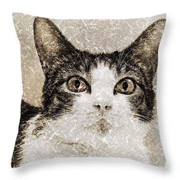Curious State Of Wonder Throw Pillow by Andee Design