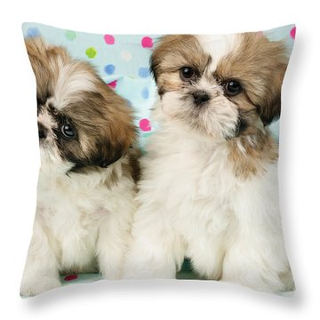 Curious Twins Throw Pillow