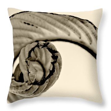 Curled Throw Pillow by Melinda Ledsome