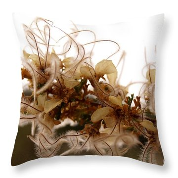 Curlleaf Mountain Mahogany Throw Pillow