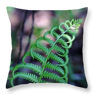 Curls Throw Pillow by Debbie Oppermann