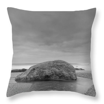 Curly Water Throw Pillow