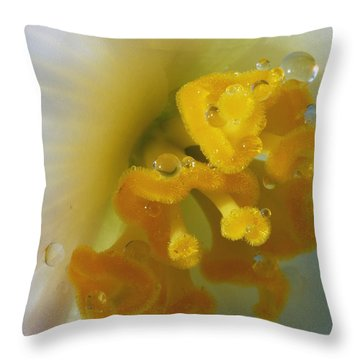 Curly Throw Pillow by Wendy Wilton