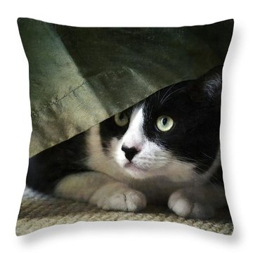 Curtain Call Throw Pillow by Fraida Gutovich