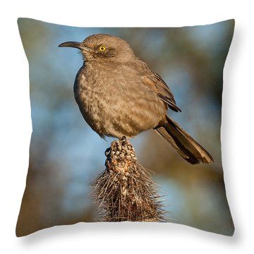 Curve-billed Thrasher On A Cactus Throw Pillow by Jeff Goulden