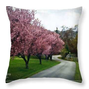 Curve In The Road Throw Pillow