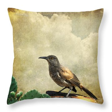 Curved Bill Thrasher Throw Pillow by Karen Slagle