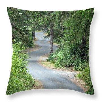 Curves Into Leadbetter Point State Park II Throw Pillow