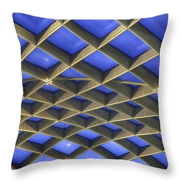 Curvilinear Skylight Structure  Throw Pillow by Lynn Palmer