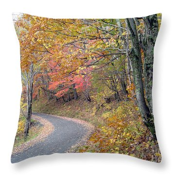 Cut Laurel Gap Throw Pillow