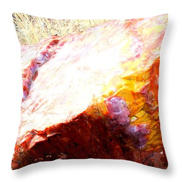 Cut Rainbow Throw Pillow