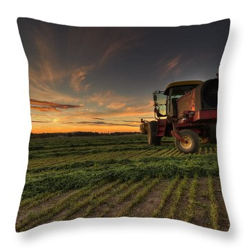 Cut To Dry Throw Pillow