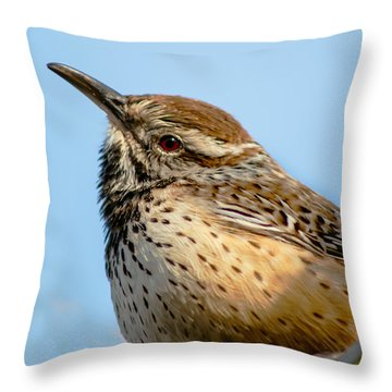 Cute Cactus Wren Throw Pillow by Robert Bales