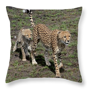 Throw Pillow featuring the photograph Cute Cheetah Wait For Me Mommy by Tom Wurl