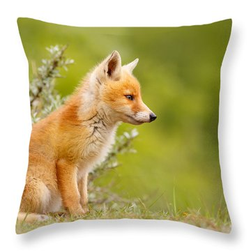 Pinocchio - Cute Fox Kit Throw Pillow