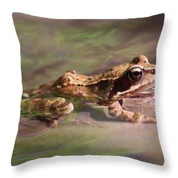 Cute Litte Creek Frog Throw Pillow