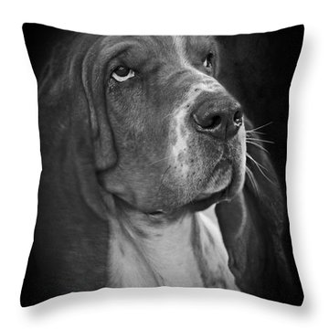 Cute Overload - The Basset Hound Throw Pillow by Christine Till