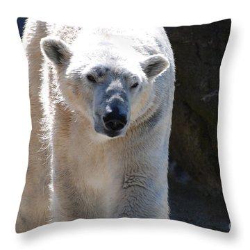 Cute Polar Bear  Throw Pillow by DejaVu Designs