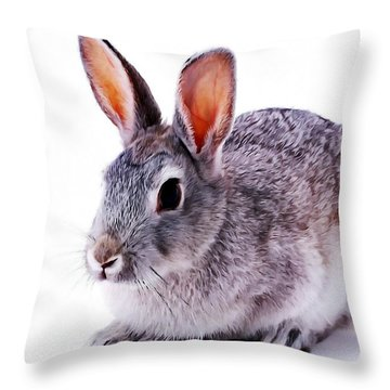 Cute Rabbit Throw Pillow by Lanjee Chee