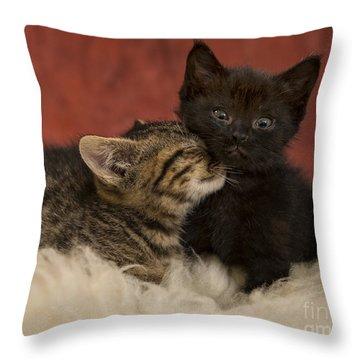 Cuties Throw Pillow