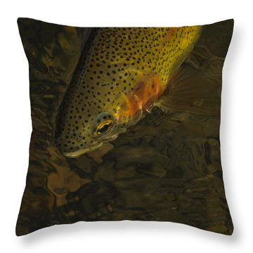 Cuttbow Throw Pillow
