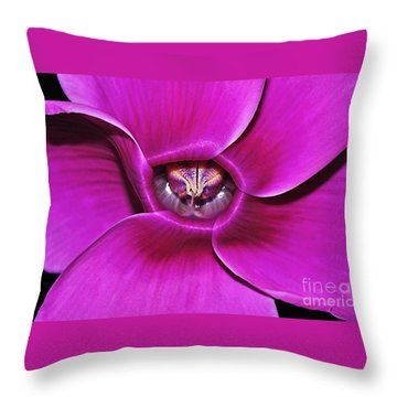 Cyclamen Beauty Throw Pillow by Kaye Menner