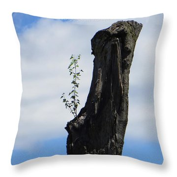 Cycle Of Life Throw Pillow by Sonali Gangane