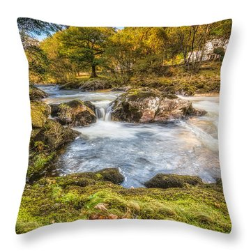 Cyfyng Falls Throw Pillow by Adrian Evans