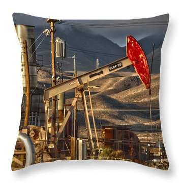 Cymric Field I Throw Pillow by Lanita Williams