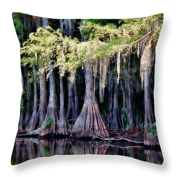 Cypress Bank Throw Pillow by Lana Trussell