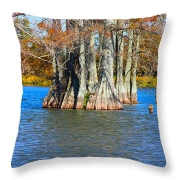 Cypress Birdhouse  Throw Pillow